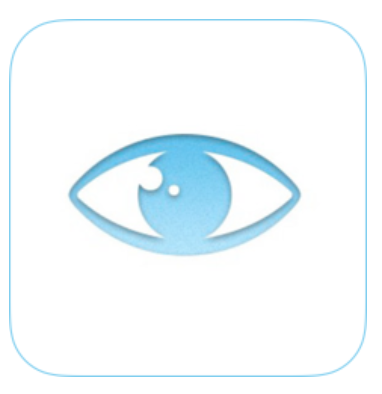 Blind and Low Vision Icon